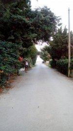 Δρόμοι του καλοκαιριού